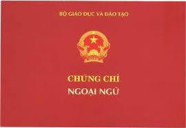 Duong day 'chay' chung chi: Mao danh DH Thai Nguyen? hinh anh