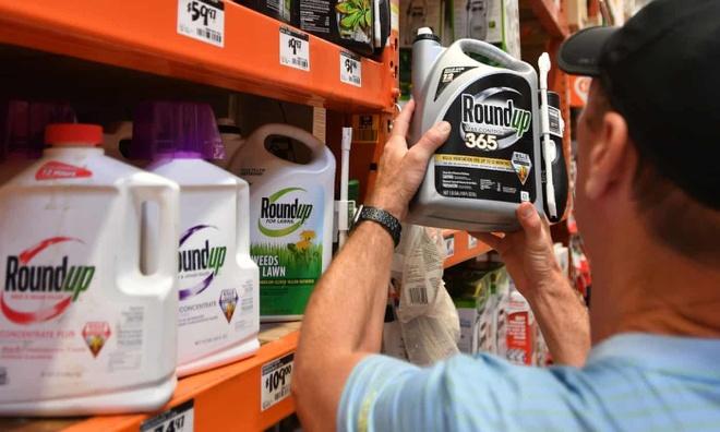 Monsanto phai boi thuong 2 ty USD cho cap vo chong ung thu o My hinh anh 1