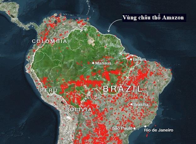 Brazil dua quan doi cuu rung Amazon anh 2