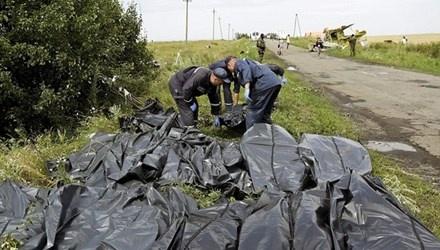 Vu MH17: Phat hien nan nhan mang mat na duong khi hinh anh