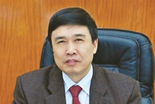Bat nguyen Tong giam doc Bao hiem xa hoi Viet Nam hinh anh