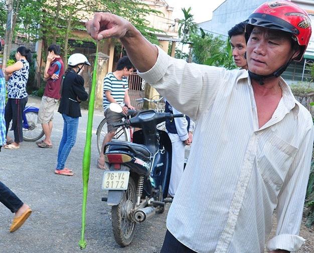 Dan Da Nang lien tuc bi ran luc can hinh anh