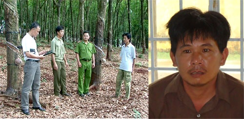 Hiện trường lô cao su nơi xảy ra vụ án mạng và nghi can Nguyễn Văn Trung .