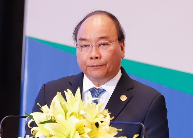 Thu tuong: Viet Nam san sang tham gia cac du an toan cau ve moi truong hinh anh 1