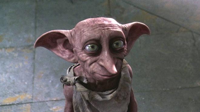 Hang loat diem den thu vi xung quanh mo cua gia tinh Dobby hinh anh