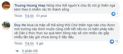 Thien nga Hai Phong guc tren bai rac song Tam Bac hinh anh 2