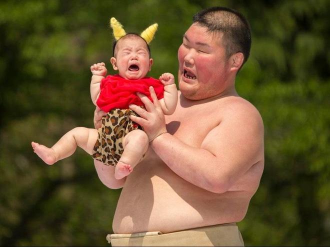 Vo si sumo Nhat thi nhau doa tre so sinh khoc thet hinh anh