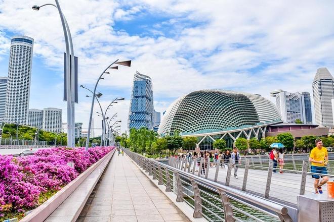 Singapore chuan bi doi mat van de rac thai hinh anh