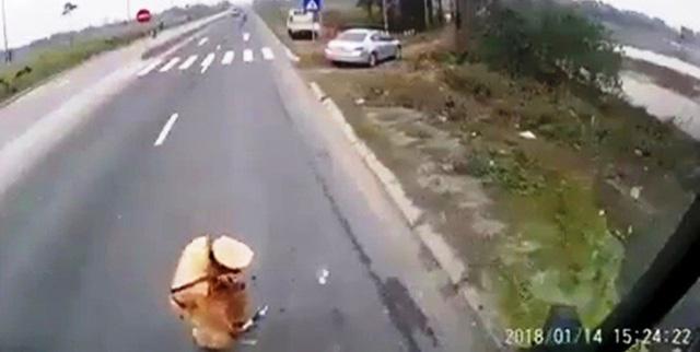 CSGT giam len vat nghi tien: Khong du can cu xac dinh nhan mai lo hinh anh