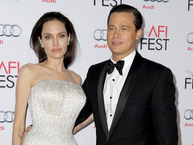 Angelina Jolie ly di Brad Pitt anh 1