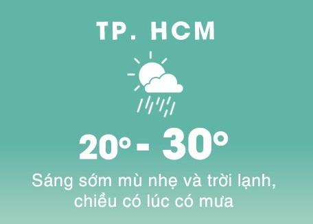 Dan mang Sai Gon 'run ray' huong ung cai lanh 20 do C hinh anh 1