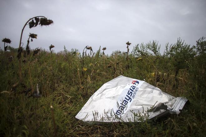 Nguoi duy nhat di tu trong vu ban roi may bay MH17 o Ukraine hinh anh 1