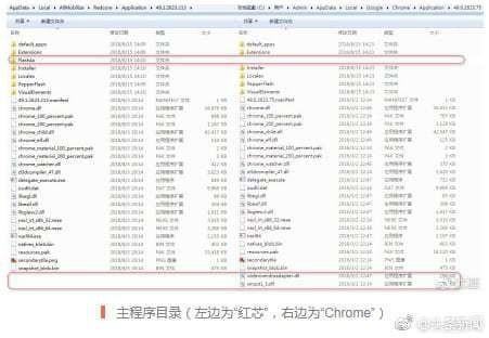 "Trinh duyet ""100% cua Trung Quoc"" bi phat hien lay nhan Google Chrome hinh anh 2"