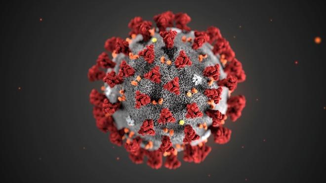 gioi cong nghe tan hoang vi virus corona anh 1