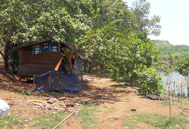Tìm thấy 2 bé sinh đôi mất tích trong ngôi nhà hoang