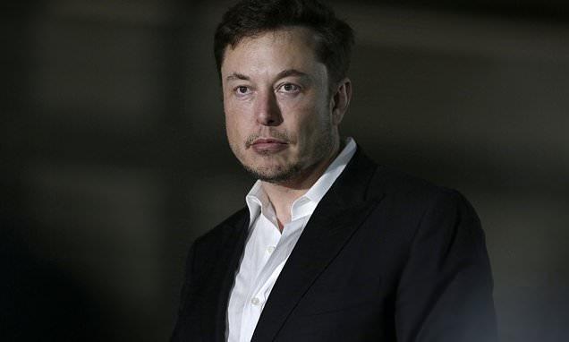 Elon Musk hut can, nhan vien bo viec, co phieu Tesla lao doc hinh anh