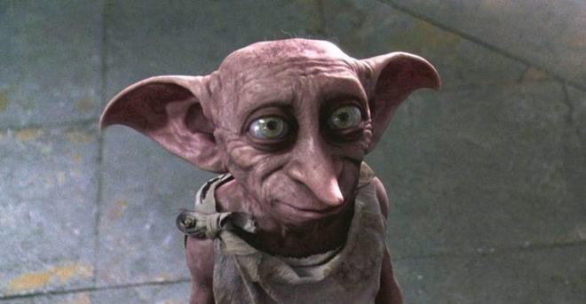 Sinh vật kỳ lạ giống trong phim Harry Potter gây xôn xao mạng xã hội