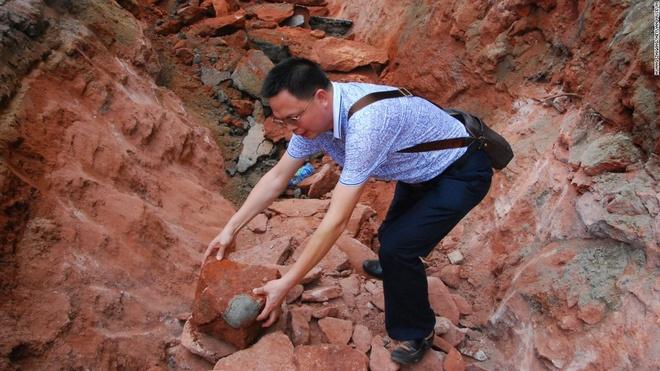 Canh sat Trung Quoc bat nhom trom trung khung long hinh anh 1