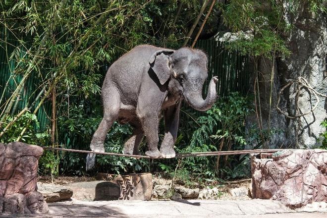 Thai Lan dan dau nhom nuoc chau A lam dung voi du lich hinh anh 1