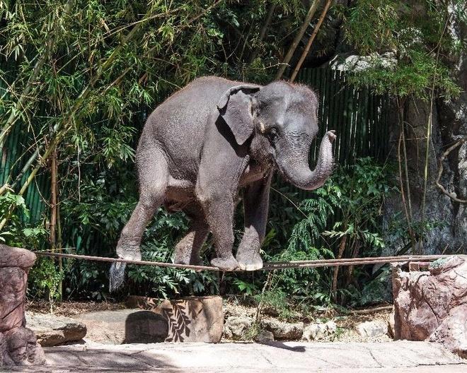 Thai Lan dan dau nhom nuoc chau A lam dung voi du lich hinh anh