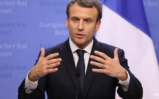 Macron phan bac chi trich vi to chuc sinh nhat xa hoa tai lau dai hinh anh