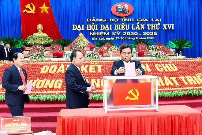 gioi thieu ong Ho Van Nien anh 1