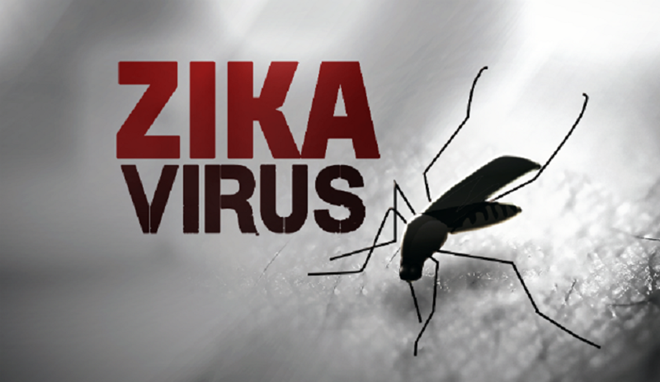 Bo truong Y te chu tri cuoc hop khan ve virus Zika hinh anh 1