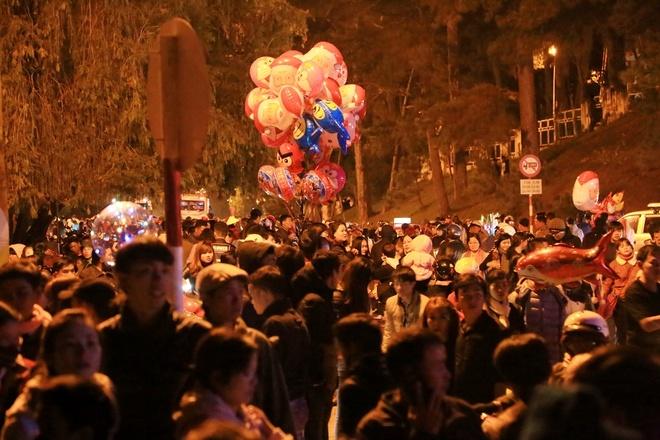 Festival Hoa Da Lat anh 5