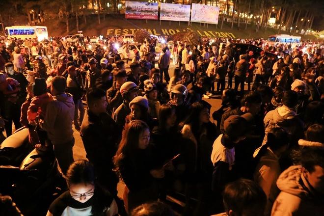 Festival Hoa Da Lat anh 6