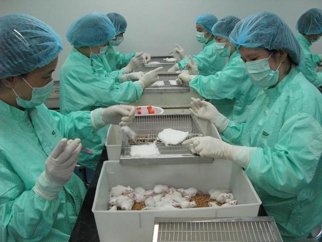 Viet Nam thu nghiem vaccine Covid-19 tren nguoi anh 1