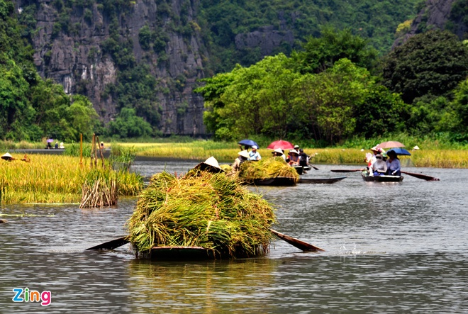 Toan canh di san the gioi Trang An - Bai Dinh hinh anh 8