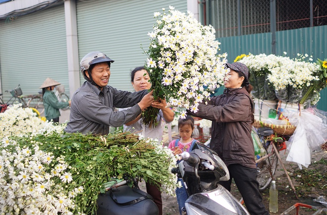 Cuc hoa mi be li ti xuong pho Ha thanh hinh anh 11
