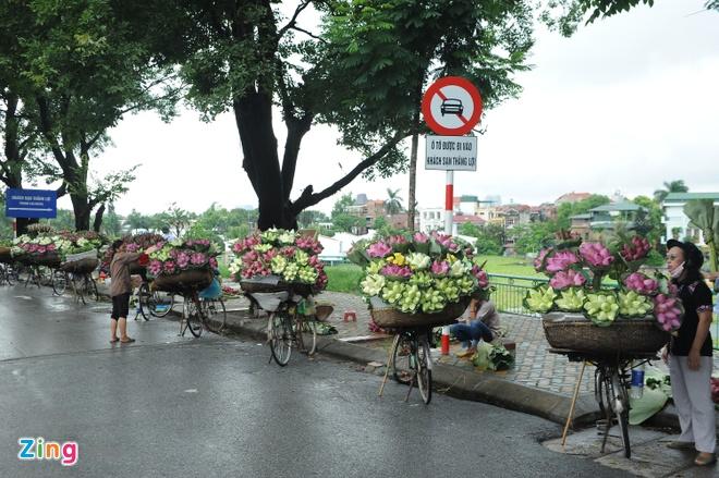 Ha Noi ruc ro mua hoa sen hinh anh 15