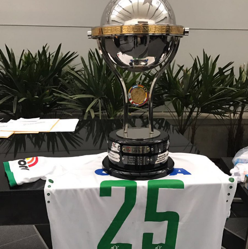 Nha vo dich nam 2015 trao cup cho Chapecoense hinh anh 1