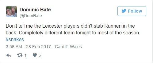Ca doi Leicester bi xo xien la ran doc hinh anh 6