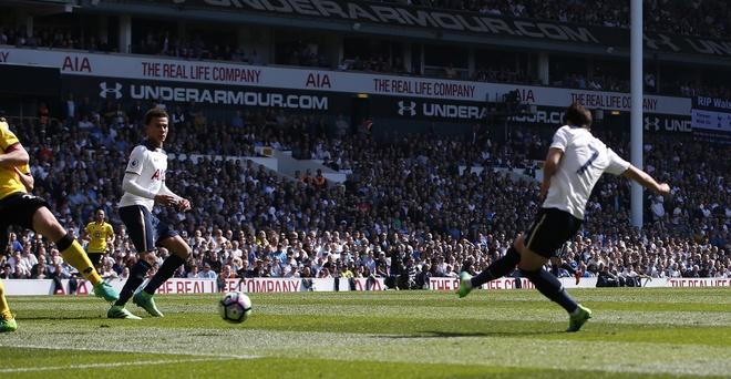 Tran Tottenham vs Watford anh 5