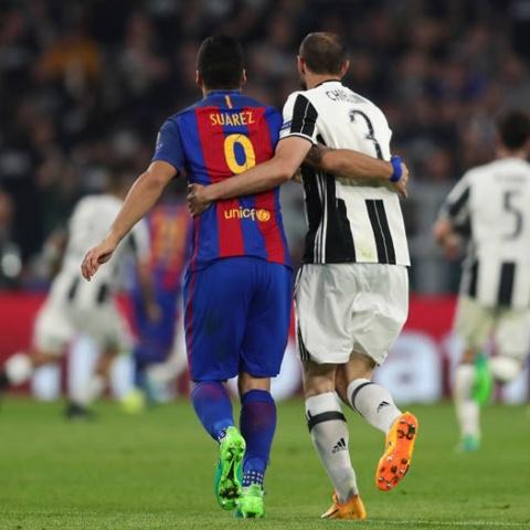 Gat het an oan, Suarez doi ao voi thac si Chiellini hinh anh 4
