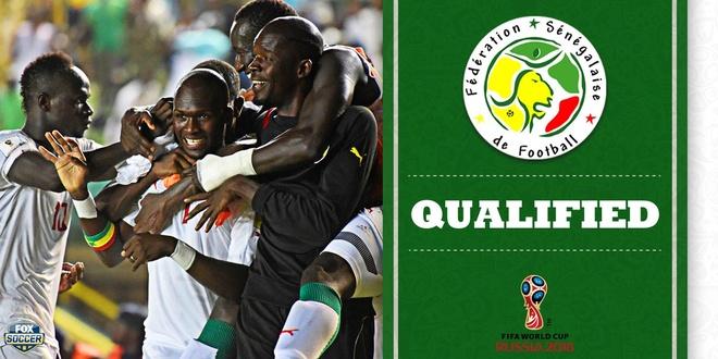tran Nam Phi vs Senegal anh 8