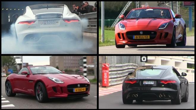 Nhung tieng net po hay nhat 2015 cua Jaguar F-Type hinh anh