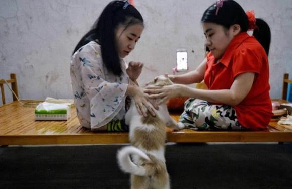 3 chi em tan tat noi tieng trong cong dong mang Trung Quoc hinh anh