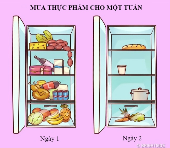 12 su that mia mai ve cuoc song xung quanh chung ta hinh anh 10