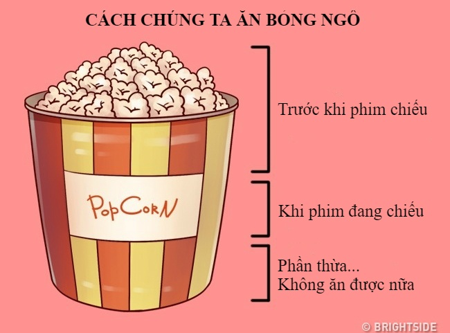 12 su that mia mai ve cuoc song xung quanh chung ta hinh anh 7