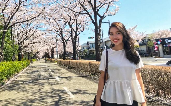Phan tra loi ung xu giup Quynh Anh nhan giai dac biet Miss Vysa 2017 hinh anh