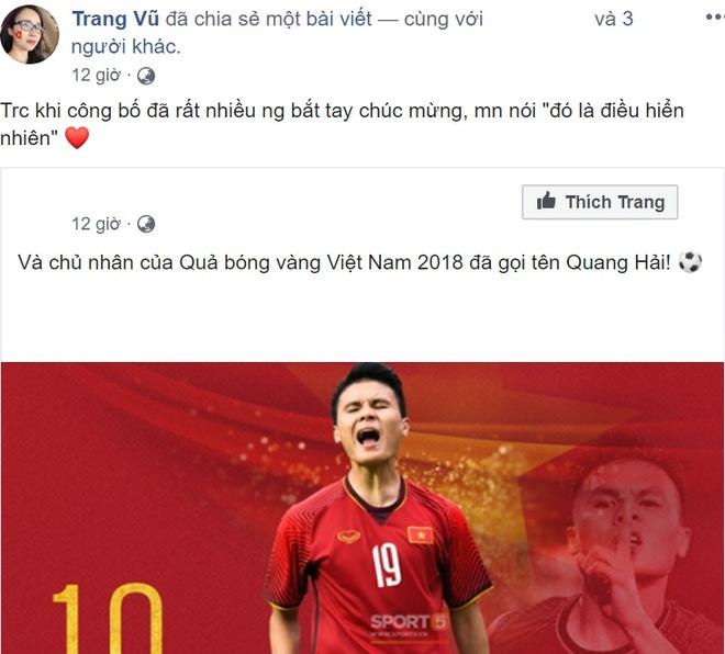 Qua bong vang Viet Nam 2018 anh 2