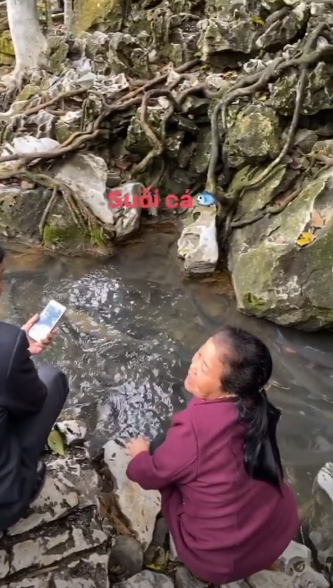 Tien Linh di le chua, Bui Tien Dung tham suoi ca than mung 2 Tet hinh anh 5 fsd_1.jpg