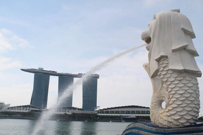 Nhung diem tham quan mien phi day hap dan o Singapore hinh anh