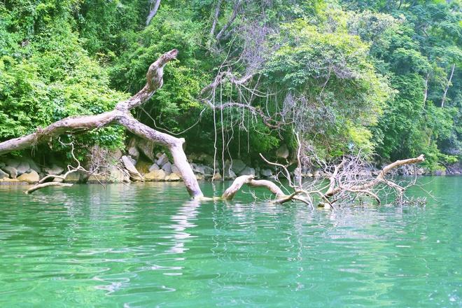 Mytour: Ngỡ ngàng trước vẻ đẹp hùng vĩ của hồ Ba Bể - Du lịch