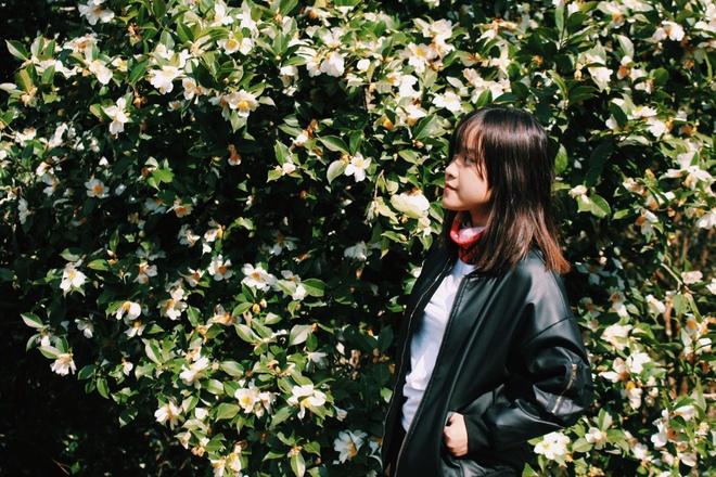 #Mytour: Tuoi 19 va chuyen kham pha thien duong co lau Binh Lieu hinh anh