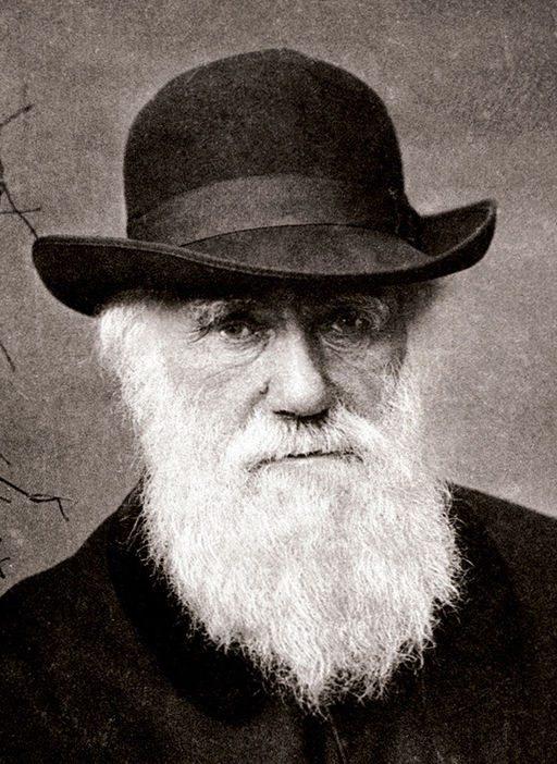 Cach doc sach thu vi, dang hoc hoi cua Charles Darwin hinh anh 1