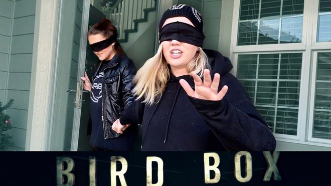 Netflix canh bao fan Bird Box vi trao luu nguy hiem hinh anh